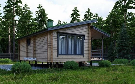 Выбираем проекты деревянных одноэтажных домов с односкатной и двухскатной крышей 1