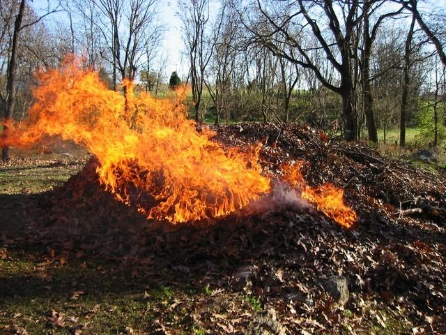 Почему нельзя сжигать мусор