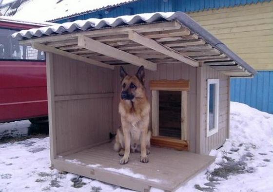 Правильное утепление будки для собаки на зиму 3